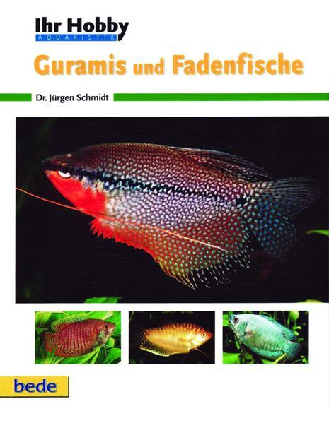 Guramis und Fadenfische als Buch (gebunden)