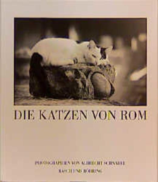Die Katzen von Rom als Buch