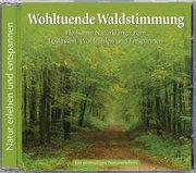 Naturgeräusche: Wohltuende Waldstimmung