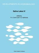 Saline Lakes IV