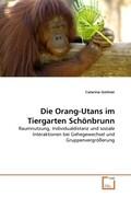 Die Orang-Utans im Tiergarten Schönbrunn