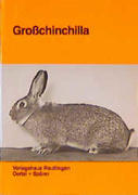 Grosschinchilla