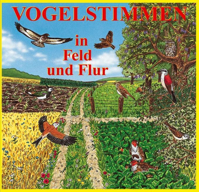 Vogelstimmen 2 in Feld und Flur. CD als Hörbuch