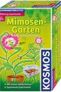 Mimosen-Garten