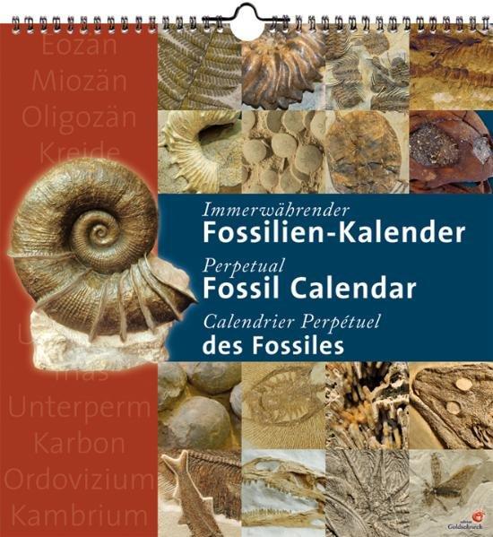 FOSSILIEN-Kalender - immerwährender Kalender