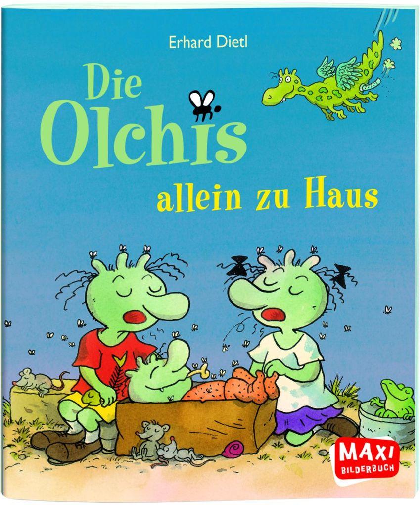 Die Olchis allein zu Haus als Buch