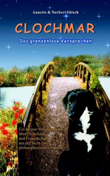 Clochmar-Das grenzenlose Versprechen als Buch