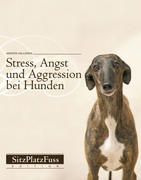 Stress, Angst und Aggression bei Hunden