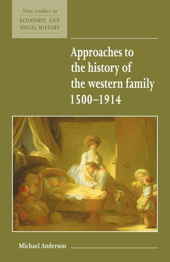 Approaches to the History of the Western Family 1500'1914 als Buch