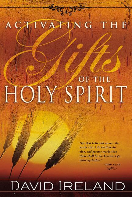 Activating the Gifts of the Holy Spirit als Taschenbuch