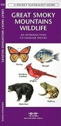 Great Smoky Mountains Wildlife: A Folding Pocket Guide to Familiar Species