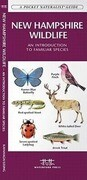 New Hampshire Wildlife: A Folding Pocket Guide to Familiar Species