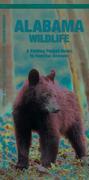 Alabama Wildlife