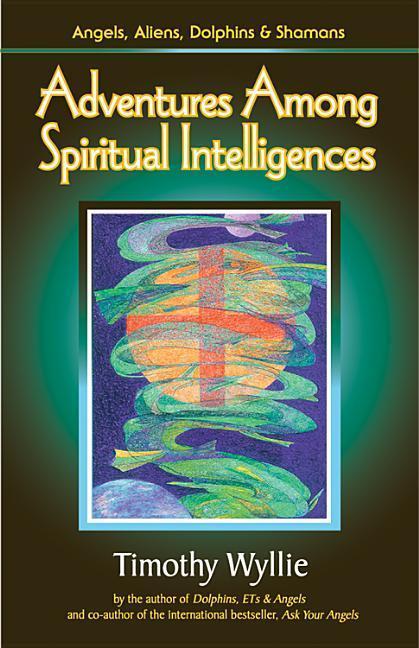 Adventures Among Spiritual Intelligences: Angels, Aliens, Dolphins & Shamans als Taschenbuch