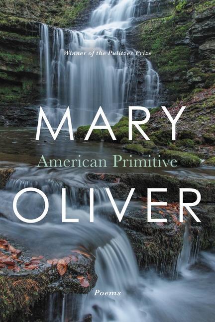 American Primitive als Taschenbuch