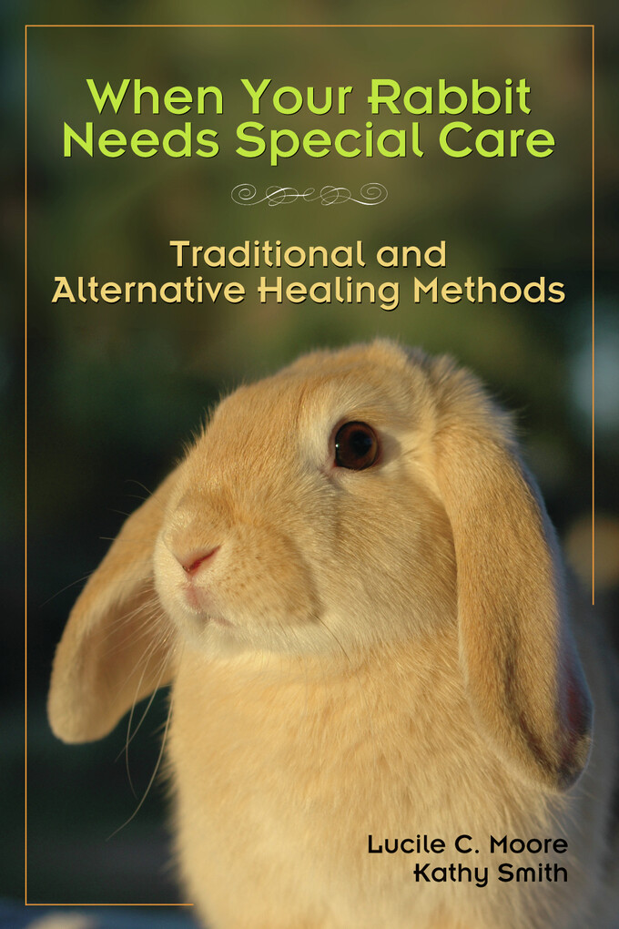 When Your Rabbit Needs Special Care als eBook D...