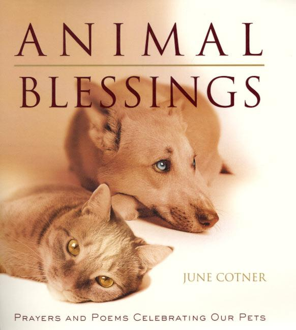 Animal Blessings: Prayers and Poems Celebrating Our Pets als Buch