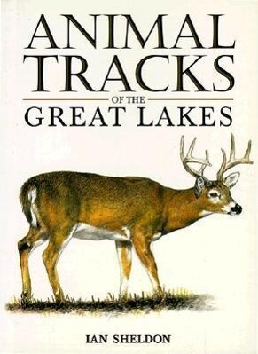 Animal Tracks of the Great Lakes als Taschenbuch