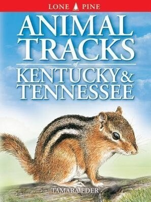 Animal Tracks of Kentucky and Tennessee als Taschenbuch
