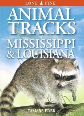 Animal Tracks of Mississippi & Louisiana als Taschenbuch