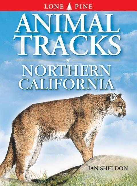 Animal Tracks of Northern California als Taschenbuch