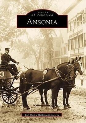 Ansonia als Taschenbuch