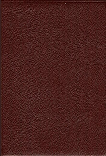 Thompson Chain-Reference Bible-KJV-Handy Size als Buch