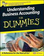 Understanding Business Accounting For Dummies, 2nd UK Edition