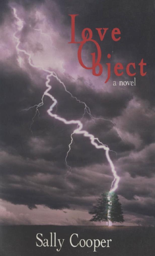 Love Object als eBook Download von Sally Cooper