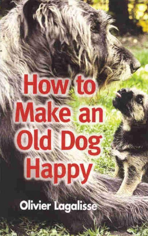 How to Make An Old Dog Happy als eBook Download...