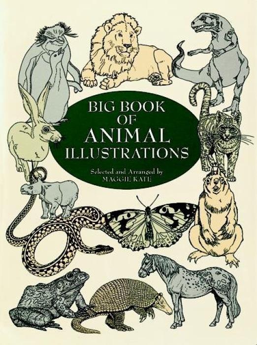 Big Book of Animal Illustrations als Taschenbuch