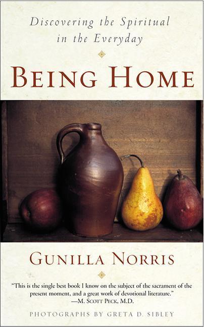 Being Home als Taschenbuch