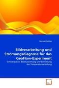 Bildverarbeitung und Strömungsdiagnose für das GeoFlow-Experiment
