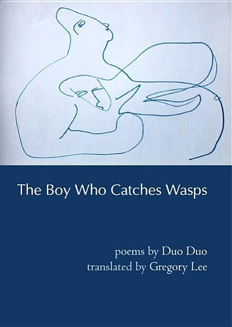 The Boy Who Catches Wasps als Taschenbuch