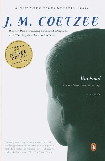 Boyhood als Taschenbuch