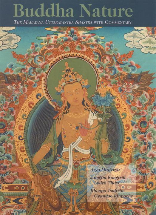 Buddha Nature: The Mahayana Uttaratantra Shastra with Commentary als Buch