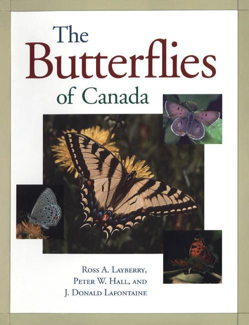 Butterflies of Canada als Taschenbuch
