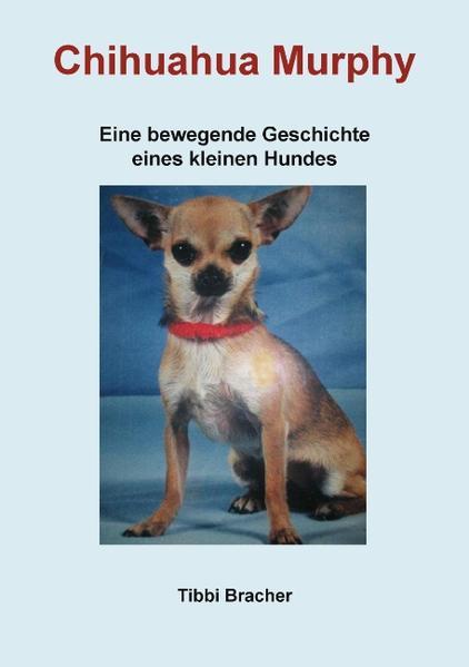 Chihuahua Murphy als Buch von Tibbi Bracher