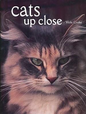 Cats Up Close als Buch