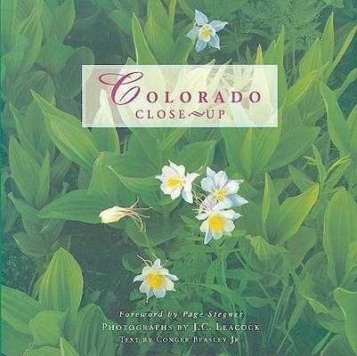 COLORADO CLOSE UP als Taschenbuch