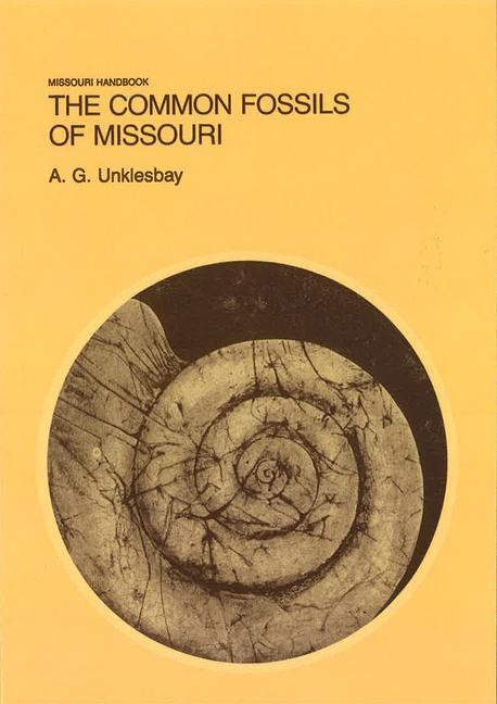 The Common Fossils of Missouri als Taschenbuch