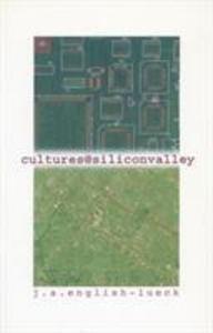 Cultures@siliconvalley als Taschenbuch