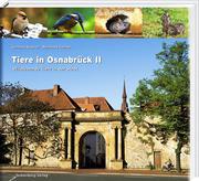 Tiere in Osnabrück II