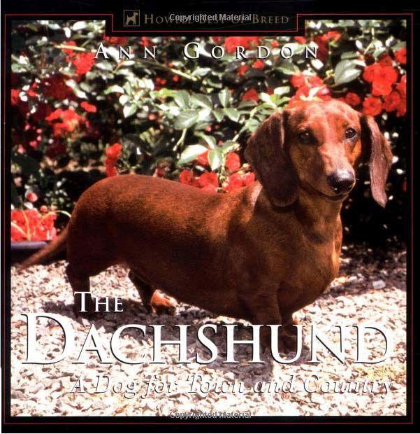 The Dachshund: A Dog for Town and Country als Buch