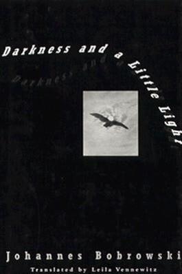 Darkness and a Little Light als Buch