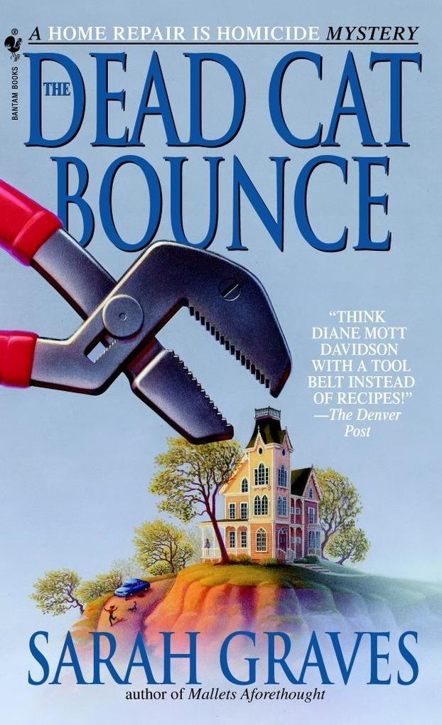 The Dead Cat Bounce als Taschenbuch