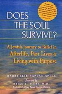 Does the Soul Survive?: A Jewish Journey to Belief in Afterlife, Past Lives & Living with Purpose als Taschenbuch