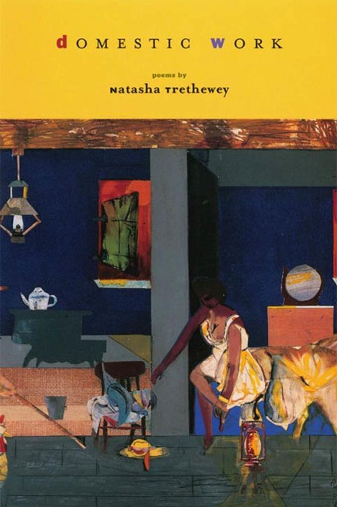 Domestic Work als Taschenbuch