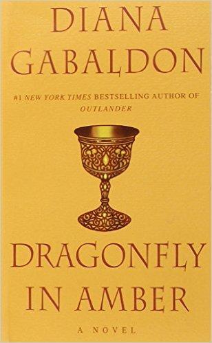 Dragonfly in Amber als Taschenbuch