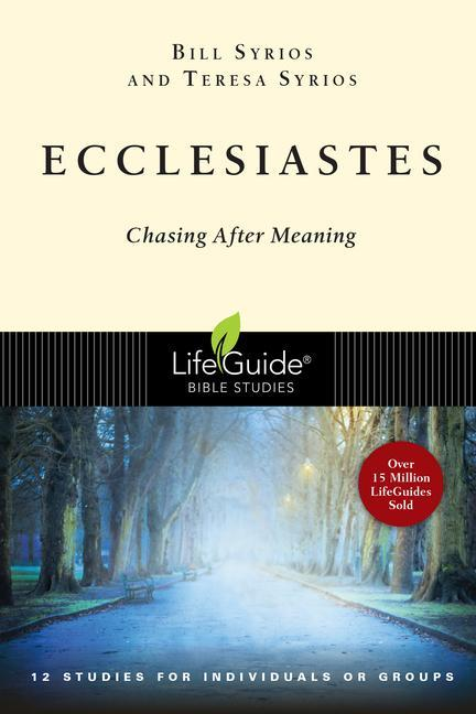 Ecclesiastes: Chasing After Meaning als Taschenbuch